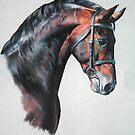Fuego II by Melissa Mailer-Yates
