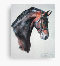 Fuego II Canvas Print