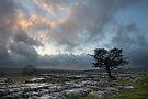 A Ribblesdale Nightfall by SteveMG