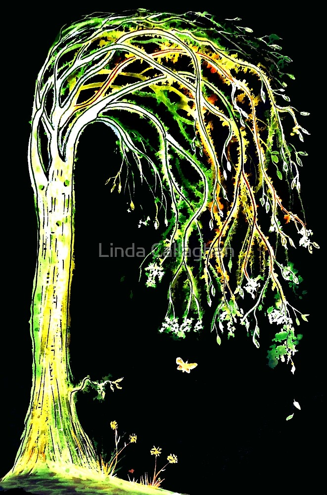 Limelight Tree by Linda Callaghan