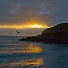 Stoney Sunrise by Susan A Wilson