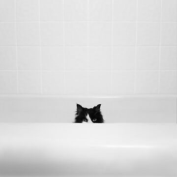 Water Please - Black and White Cat in Bathtub by truthis