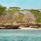 Bali National Park viewed from a boat by Michael Brewer