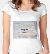 Pied Oystercatcher  Women's Fitted Scoop T-Shirt