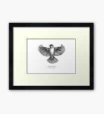 Sparrow Spreading Wings Framed Print