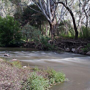 Ovens River rapids by kllebou