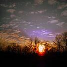 Birthday Sunset by debbiedoda
