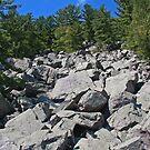 Rocky Climb by ECH52