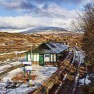 Rannoch Station by Lynne Morris