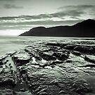 Skeleton Coast - South Cape Bay, Tasmania by Liam Byrne