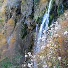Romantic Waterfalls by TatianaMichaela