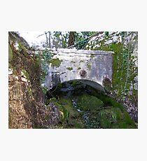 Old Bridge Photographic Print
