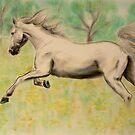 Spring gallop by stepanka