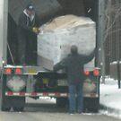 moveing day by Jeannie Matthews