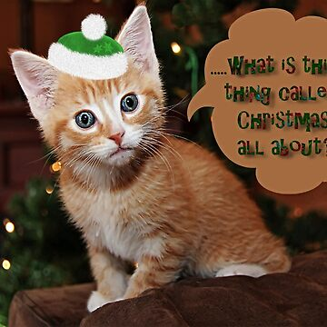 What is this thing called Christmas all about? by DiamondWillow