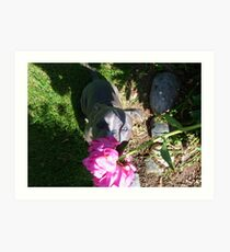 Gorgeous Baby Pit Bull Puppy Dog in Peony Flowers Art Print