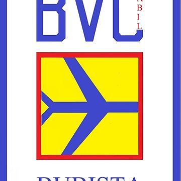 Bubista/ Boa Vista Island Airport by SkolaNobu