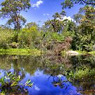 Blue Ponds by Mark van den Hoek