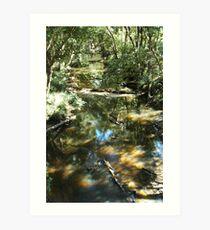 Low Water Art Print