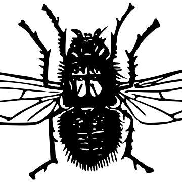 Blowfly Calliphora vicina by Chocodole