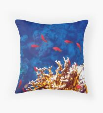 Beautiful Red Sea Anthias Throw Pillow