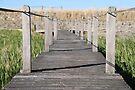Boardwalk by Emma Holmes