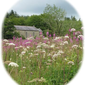 Irish Country Church in Rosebay Willowherb field by DAscroft