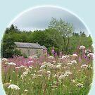 Irish Country Church in Rosebay Willowherb field by DAscroft