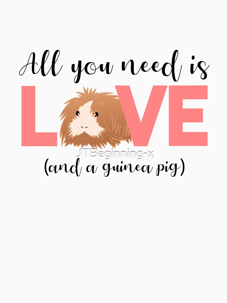 GUINEA PIG - ALL YOU NEED IS LOVE AND A GUINEA PIG by JTBeginning-x