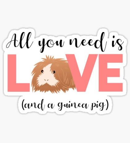 GUINEA PIG - ALL YOU NEED IS LOVE AND A GUINEA PIG Sticker