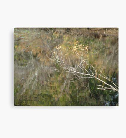 Little Branch Canvas Print