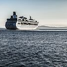 Ferry in The Puget Sound by milod21