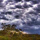 Cotton Ball Clouds by Mark van den Hoek
