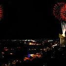 Australia Day Fireworks by Sheldon Pettit