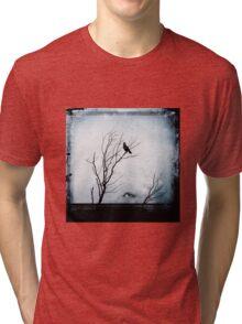 No Title 4 Tri-blend T-Shirt