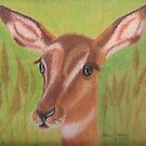 Susan's Impala by Hilary Robinson