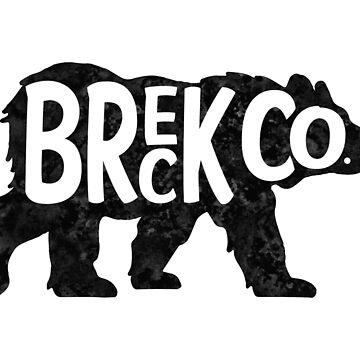 Skiing Breck Breckenridge Ski Colorado Bear by MyHandmadeSigns