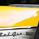 Yellow Fin by WalkingFish