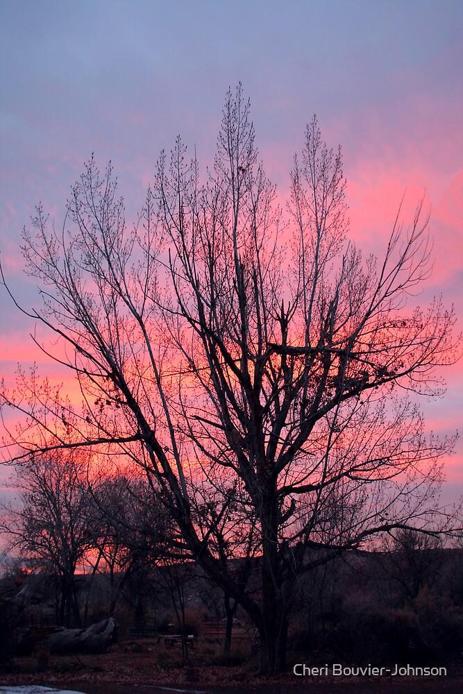 Bluff Sunrise by Cheri Bouvier-Johnson