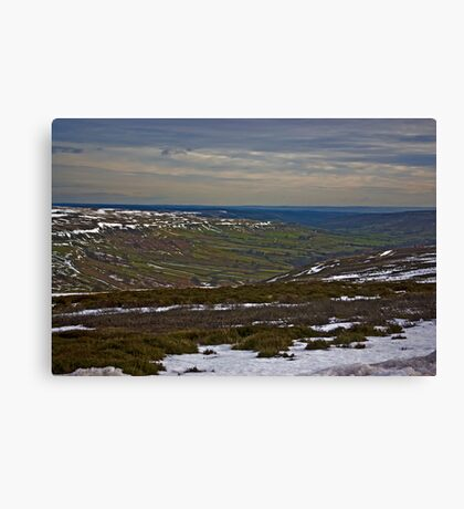 The Last of the Snow Canvas Print