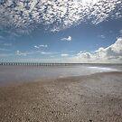 Low tide. by Peter Doré