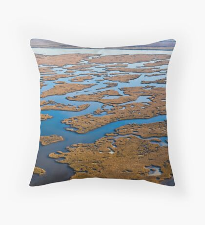 Louisiana Wetland Throw Pillow