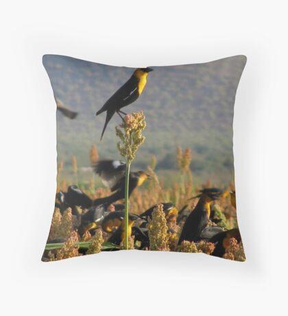 Yellow-headed Blackbirds Throw Pillow