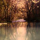 Autumn Stream in Missouri by Susan Russell