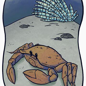 Crab by KristelMallet