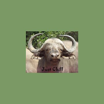 Just Chill Cool Water Buffalo by ccnnddrr55