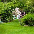 Take a Stroll Through the Garden by Monica M. Scanlan