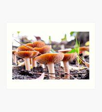 mushroom factory in Weedy Field Art Print