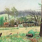 Marysville after the fires by Mick Kupresanin