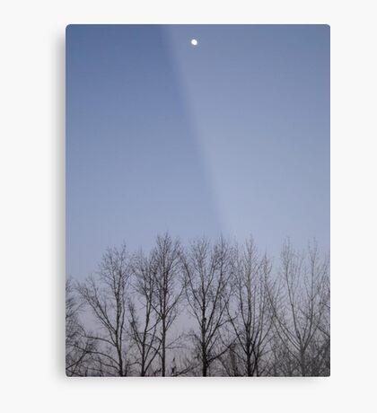 Bare Trees and a Three-quarter Moon Metal Print